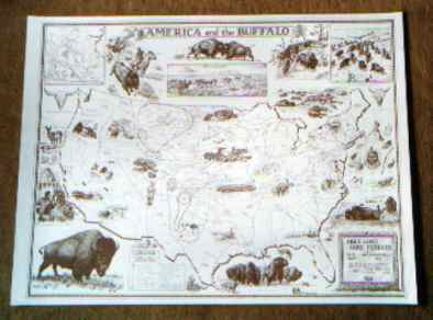America and the Buffalo