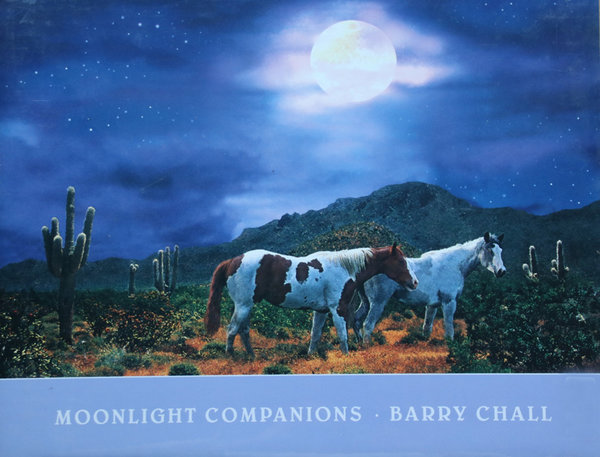 Moonlight Companions - Barry Chall